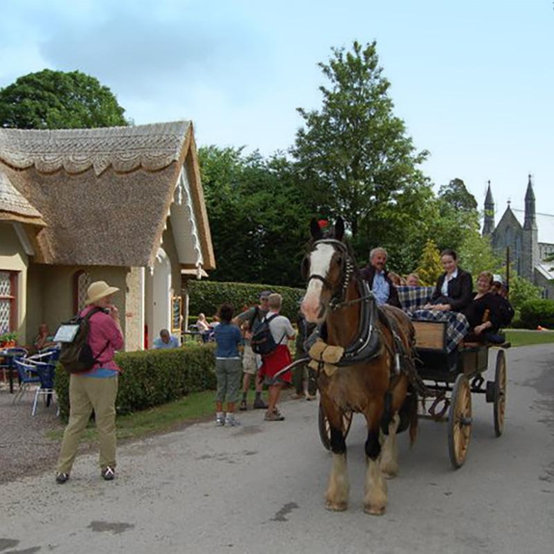 Jaunting Car Tours - Killarney