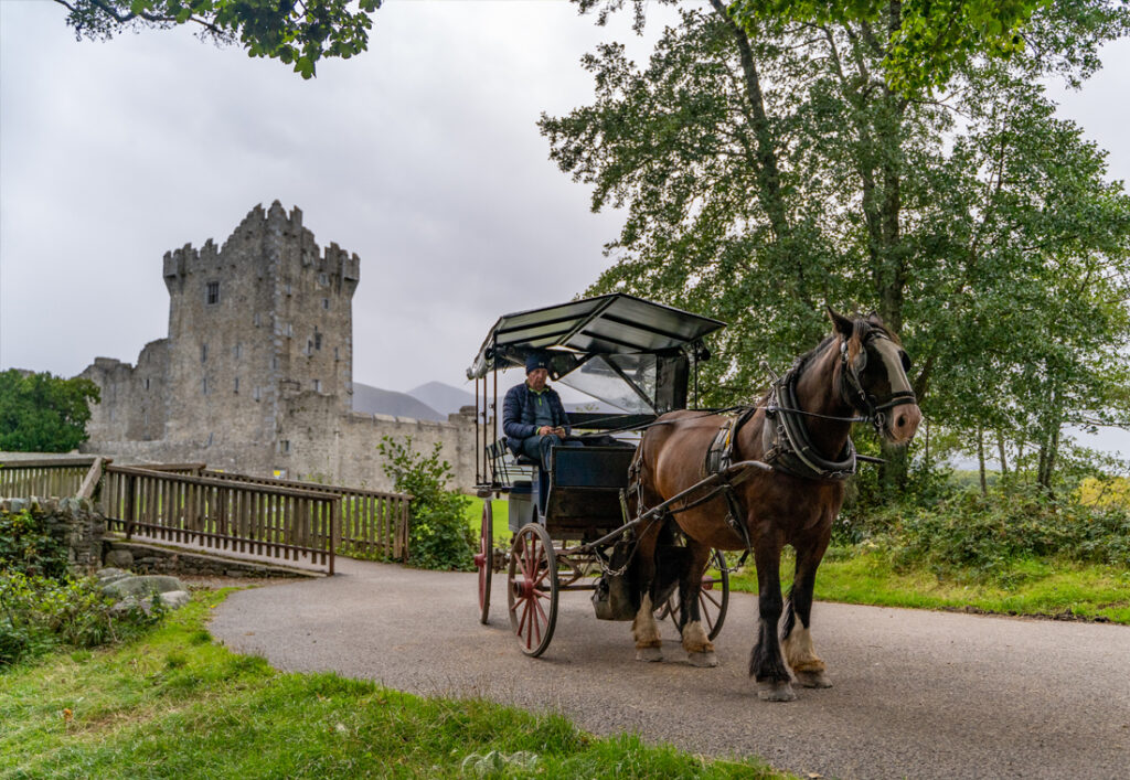"""Enjoy the sights of Killarney National Park from the traditional Jaunting Car. Operating all year-round, the Killarney Jaunting car trip is a """"must"""" for every one visiting Killarney."""